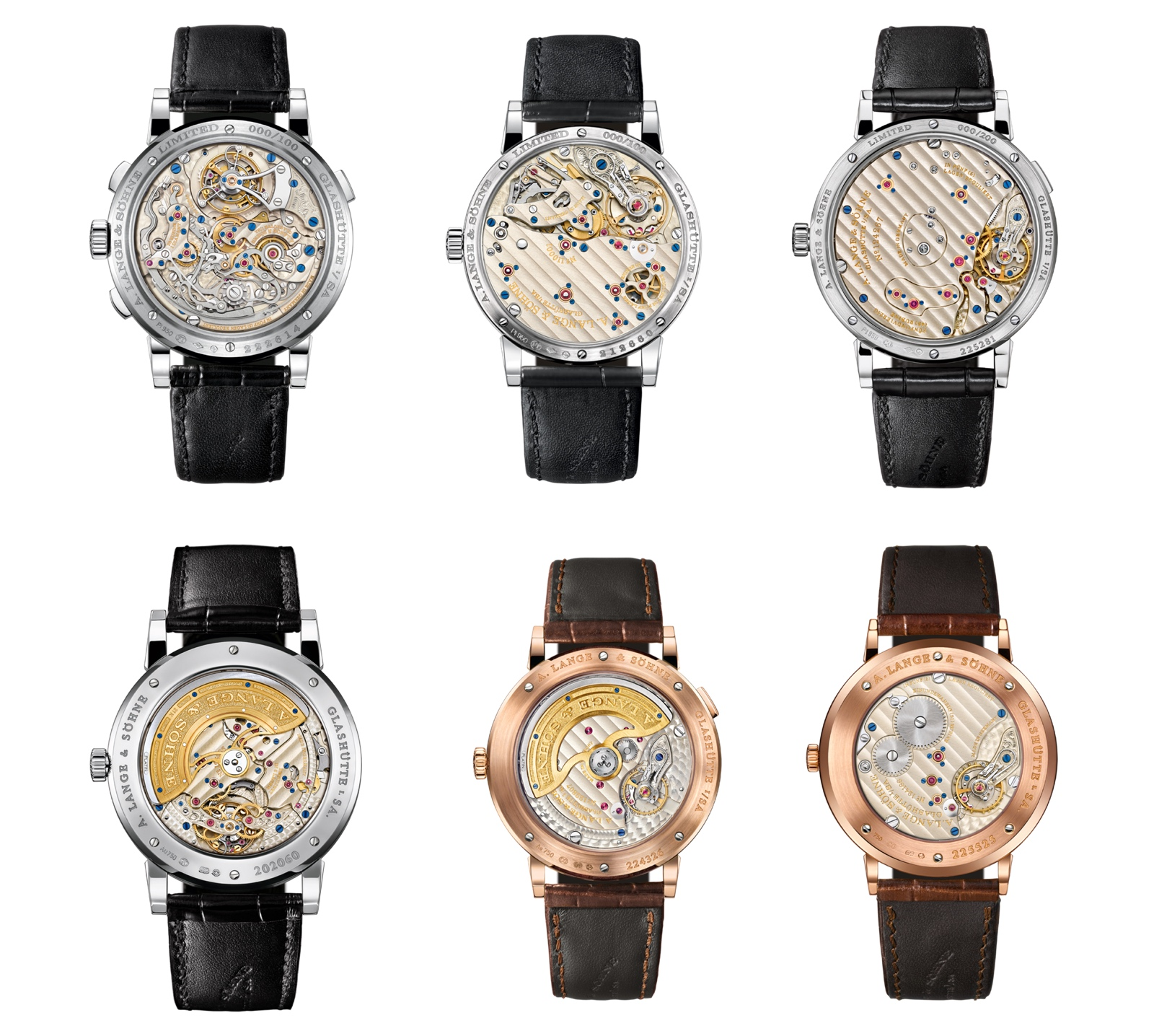 Lange Collection 2016 Backs