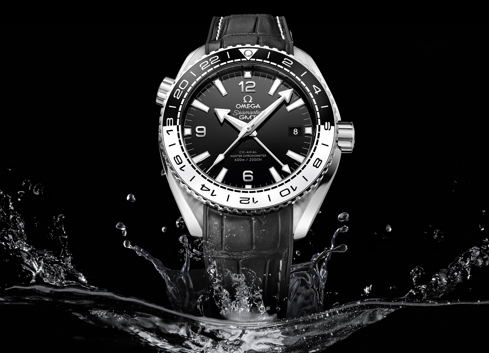 Omega Seamaster Planet Ocean Master Chronometer GMT Mood