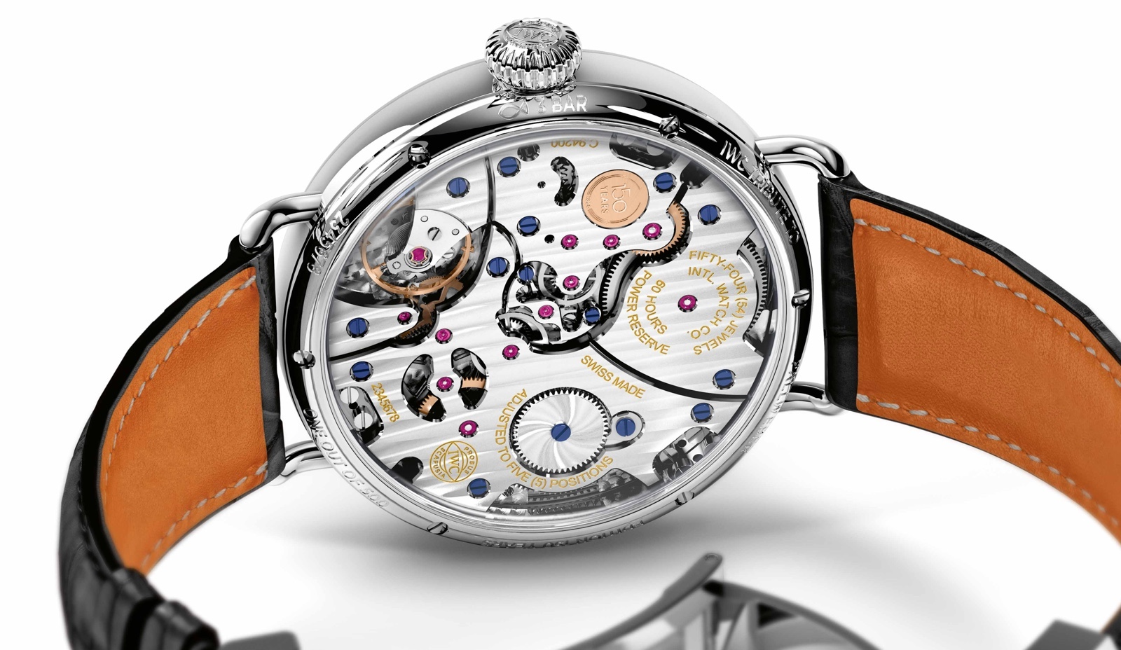 IWC Tribute to Pallweber Caseback