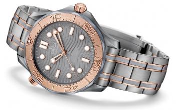 Omega Seamaster Diver 300M Titanium Tantalum Cover